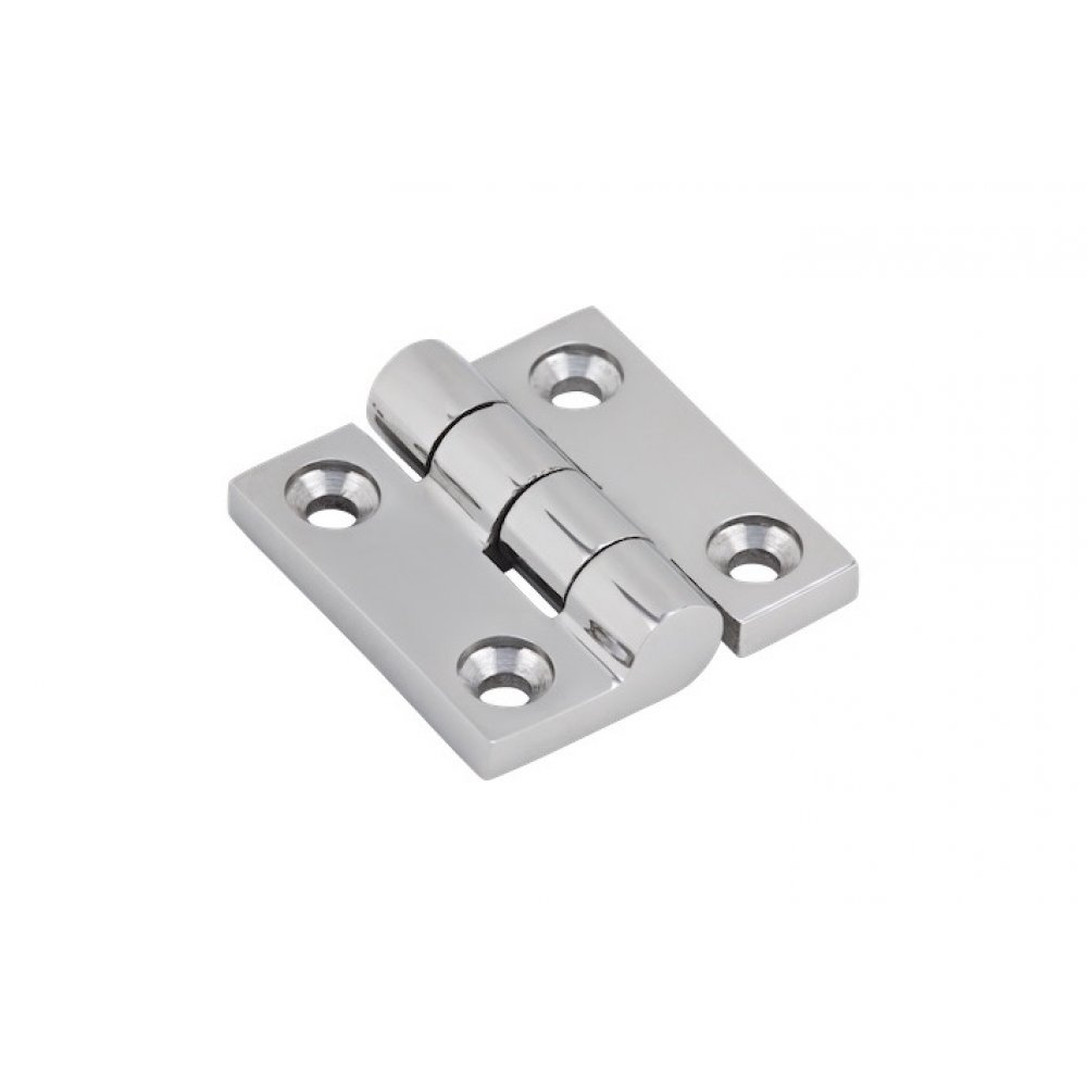 38mm x 38mm Stainless Steel Flat Hinge SS316