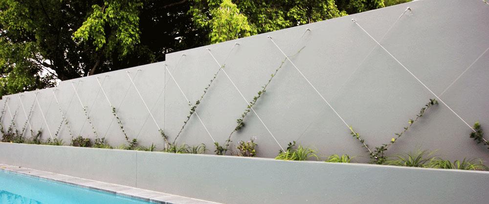 Green Wall Garden Trellis Stainless Wire Amp Posts